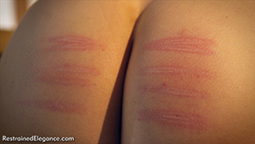 Ariel's Judicial Caning at Dreams of Spanking