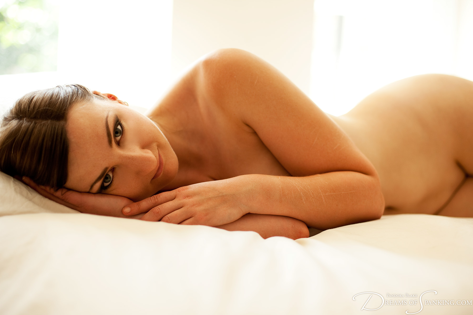 Click to view high-resolution preview image for Boudoir%20Nudes