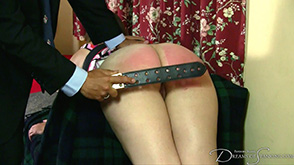 Click to view more previews of The Professional Disciplinarian