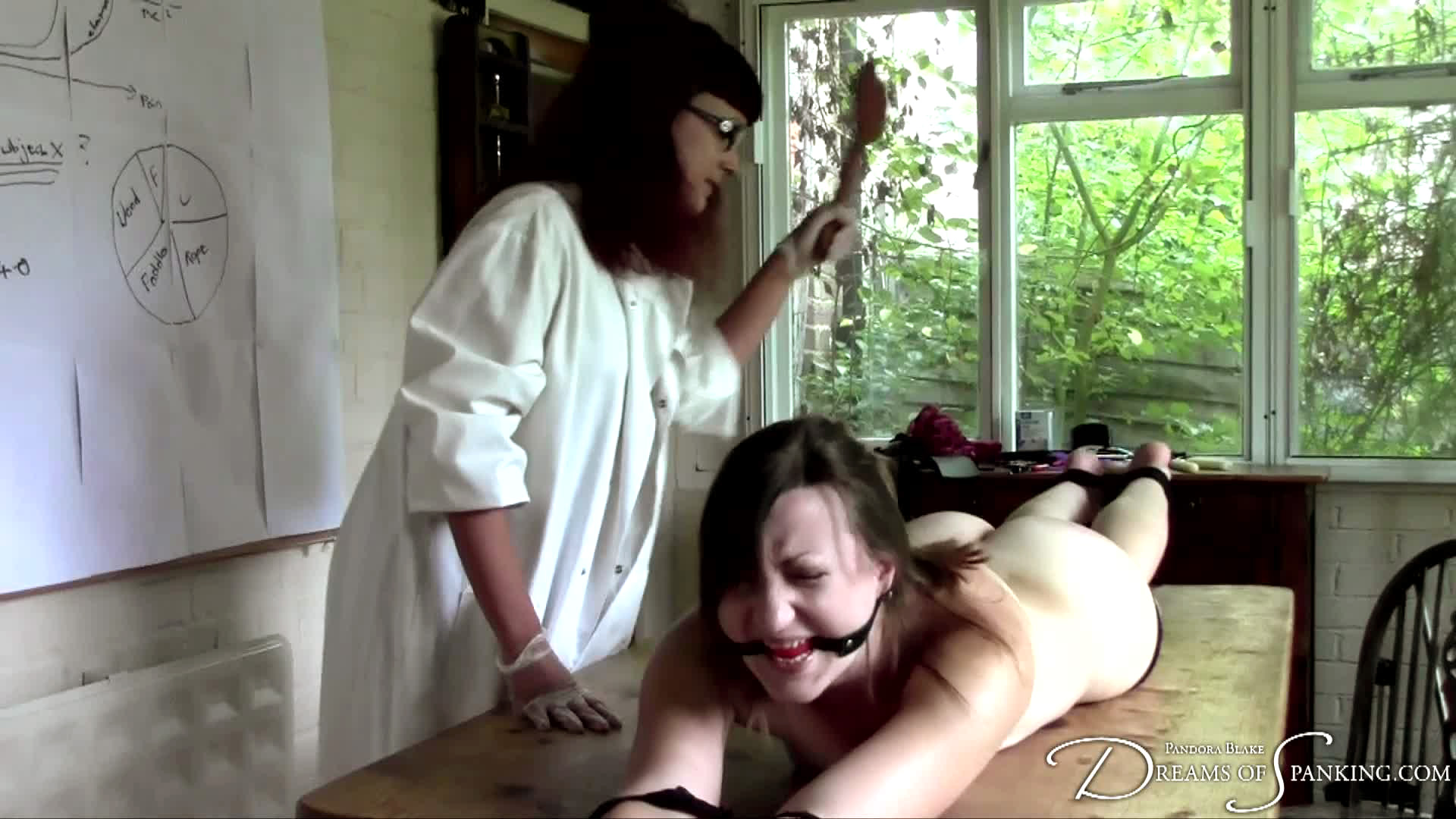 Doctor of Pain at Dreams of Spanking