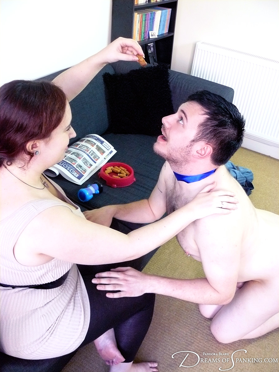 Pet play and puppy roleplay at Dreams of Spanking